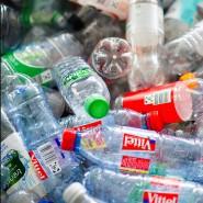 Leere Flaschen aus Plastik liegen in einer Kiste.