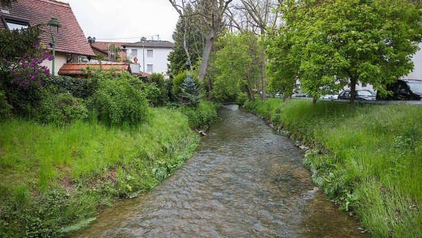 Viele resistente Keime im Eschbach