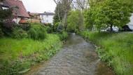 Trügerische Idylle: Der Eschbach in Nieder-Eschbach eignet sich nicht zum Baden.