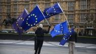 Demonstranten vor dem Parlament in Westminster, London