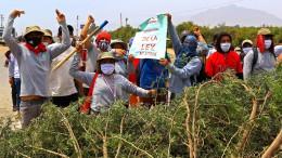 Toter bei Bauern-Protesten
