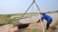 Wie auch Kleinbauern mehr ernten können