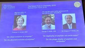 Chemie-Nobelpreis geht an Protein-Forscher