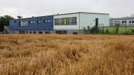 Platz für Betreuungsraum mit Küchenzeile: Der Neubau der Regenbogenschule in Hattersheim.