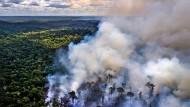 Rauch steigt über dem Amazonas-Regenwald auf.