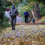 Corona und der Herbst: Ein Mann mit Mund-Nasen-Schutz spaziert in Brüssel durch einen Park.