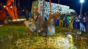 Elefant aus Brunnen gerettet
