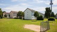 Platensiedlung: Der Wohnraum wird verdichtet, es entstehen 700 neue Wohnungen