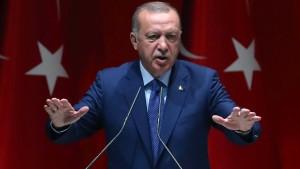 Erdogans Probleme