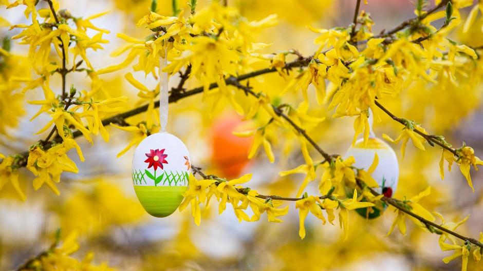Eierfärben gehört zu den Klassikern an Ostern.