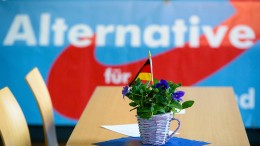 AfD-Fraktion im Saarland schließt Abgeordneten aus