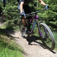 Es geht bergab: mit dem Mountainbike durch den Taunus