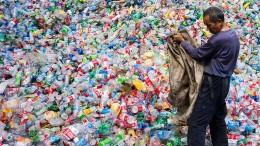 Enzyme gegen Plastikmüll
