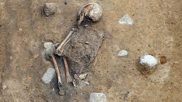 Spektakulärer Skelettfund in der Uckermark
