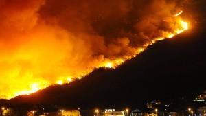 Waldbrände entlang der Adriaküste