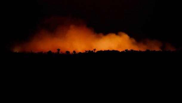 Hunderte neue Feuer im Amazonas ausgebrochen