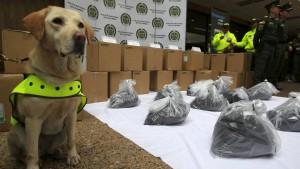 Spürhunde stoßen auf zwei Tonnen Kokain