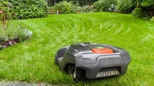 Smart Gras