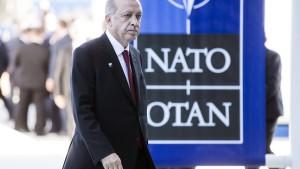 Türkei darf keinen Nato-Gipfel ausrichten