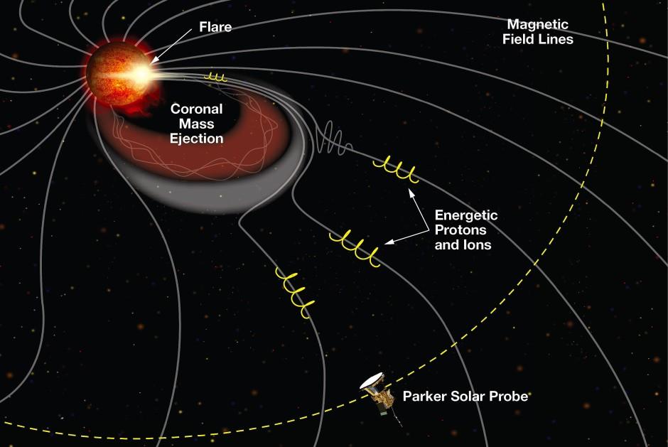Die entscheidende Rolle in der Wechselwirkung der Sonne mit ihrer Umgebung spielt das solare Magnetfeld.