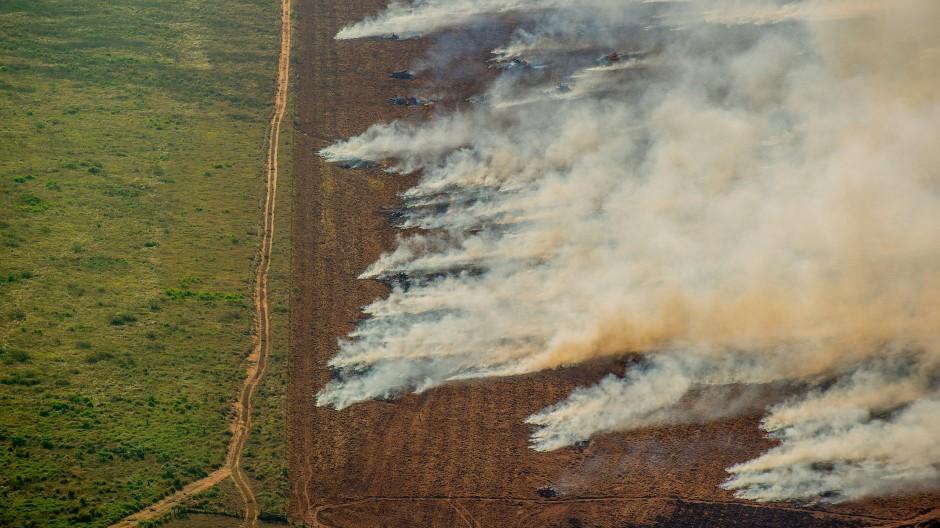 Brennende Waldfläche in Nova Maringa, Brasilien