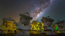 Die Neuen im galaktischen Stammbaum
