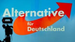AfD Bremen doch zur Bundestagswahl zugelassen