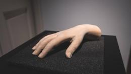 Hand in Hand mit der Klaviervirtuosin