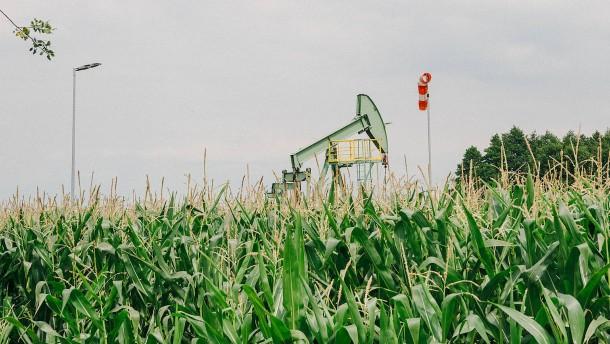 Viel Erdöl und nirgends ein Fluch
