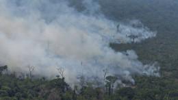 Das ökologische Endspiel am Amazonas