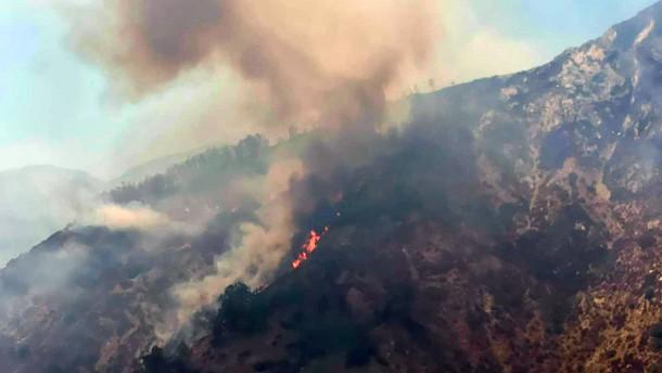 Waldbrände lassen nicht von Italien ab