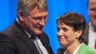 Petry attackiert Meuthen