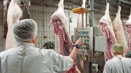 Razzien wegen illegaler Leiharbeit in der Fleischindustrie
