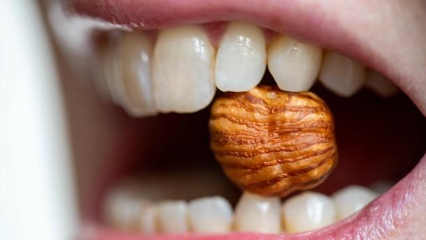 Immer mehr Menschen leiden an Lebensmittel-Allergien