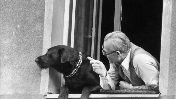 Berlin: Alter Mann mit Hund am Fenster