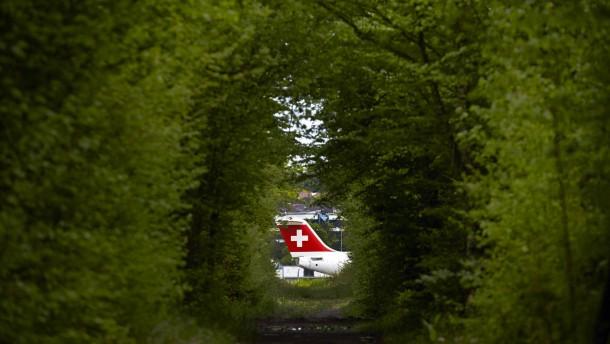 Die Schweiz sägt am eigenen Ast