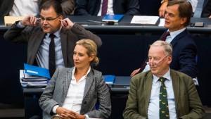 """""""Der Spiegel"""" gibt Unterlassungserklärung gegenüber AfD-Fraktion ab"""