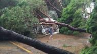 Campingplatz bei Venedig: Bei Unwettern über Norditalien sind mehrere Menschen verletzt worden.
