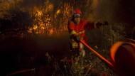 Waldbrände wüten unweit von Marseille