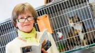 Vorlesen gegen den Katzenjammer