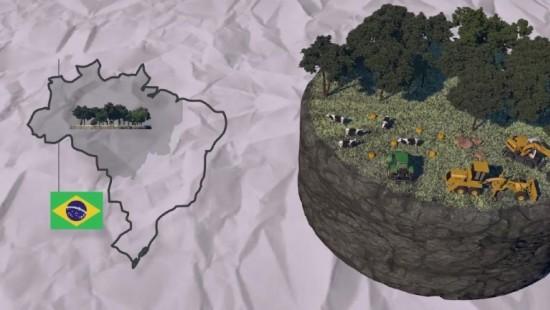 So schrumpfen weltweit die Wälder