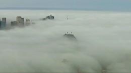 Sydney verschwindet im Nebel