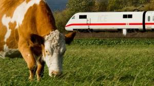 Ist die Bahn gar nicht so ökologisch?