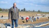 Landwirt Klaus Bauerle auf einem Spargelfeld. Im Hintergrund arbeiten Erntehelfer.