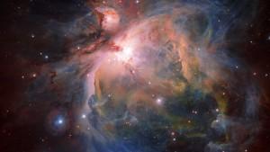 Babyboom im Orion