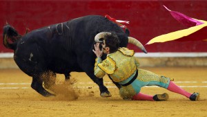 650-Kilo-Bulle trifft einäugigen Torero wieder im Gesicht