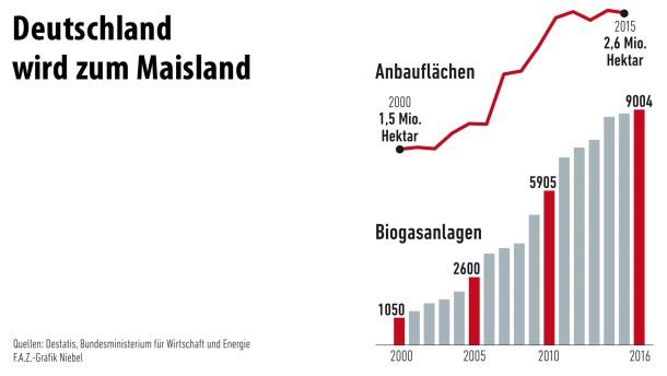 Infografik - Deutschland wird zum Maisland