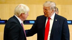 """Trump verspricht Johnson """"sehr umfangreiches"""" Handelsabkommen"""