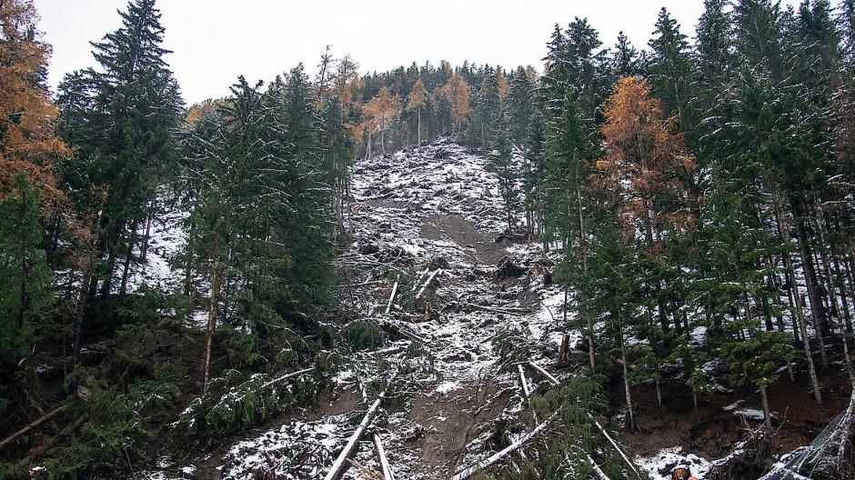Schneise der Verwüstung: Nach den starken Schneefällen bemühen sich die Österreicher darum, Straßen wieder freizuräumen.