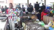 Pangoline und andere wilde Tiere werden hier auf dem Markt in Libreville (Gabun) verkauft.